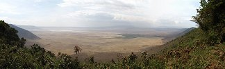 Click here to download wp_ngorongorocrater.zip